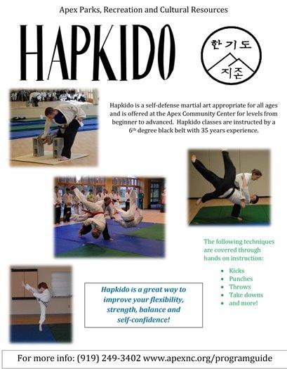 Hapkido flier