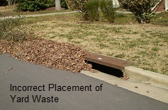 Incorrect Placement of Yard Waste