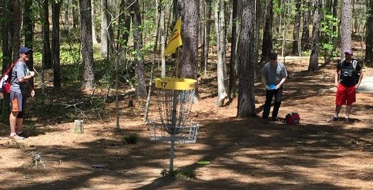 Disc Golf Picture
