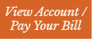 view.account.pay.bill Opens in new window