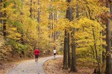 Lake Pine Greenway Trail with Men Running